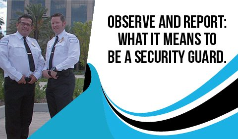 Observe And Report: What It Means To Be A Security Guard